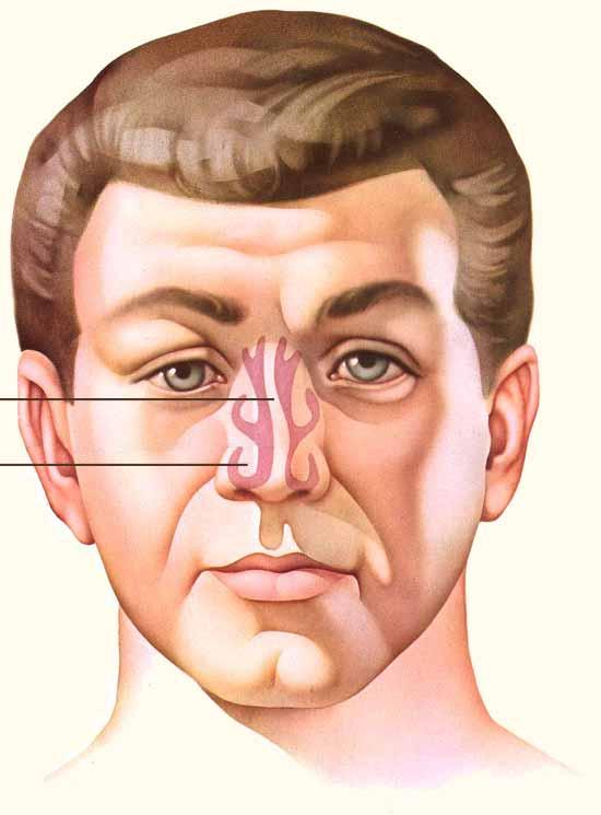 Laser Nasal Surgery to Correct Nasal Blockage